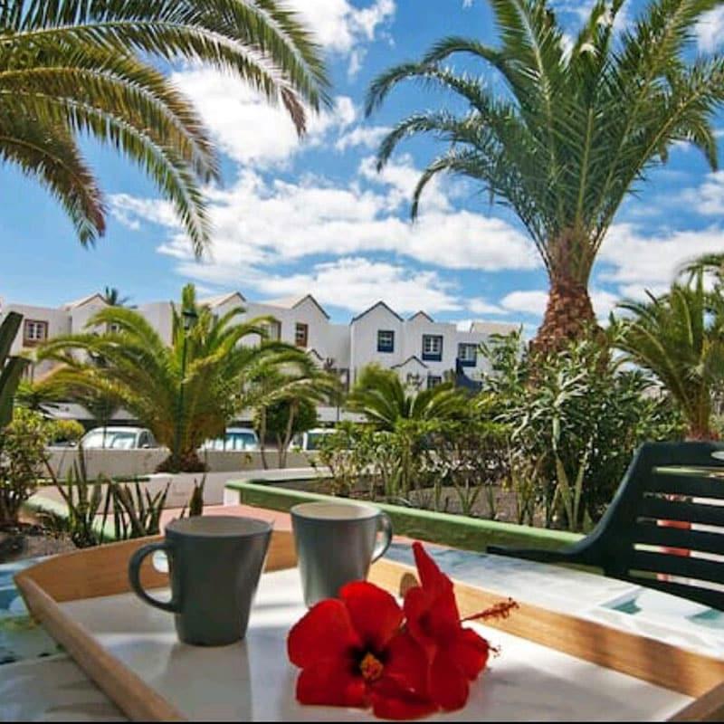 apartamentos duplex las marinas terraza con vistas a la piscina y palmeras con cielo azul