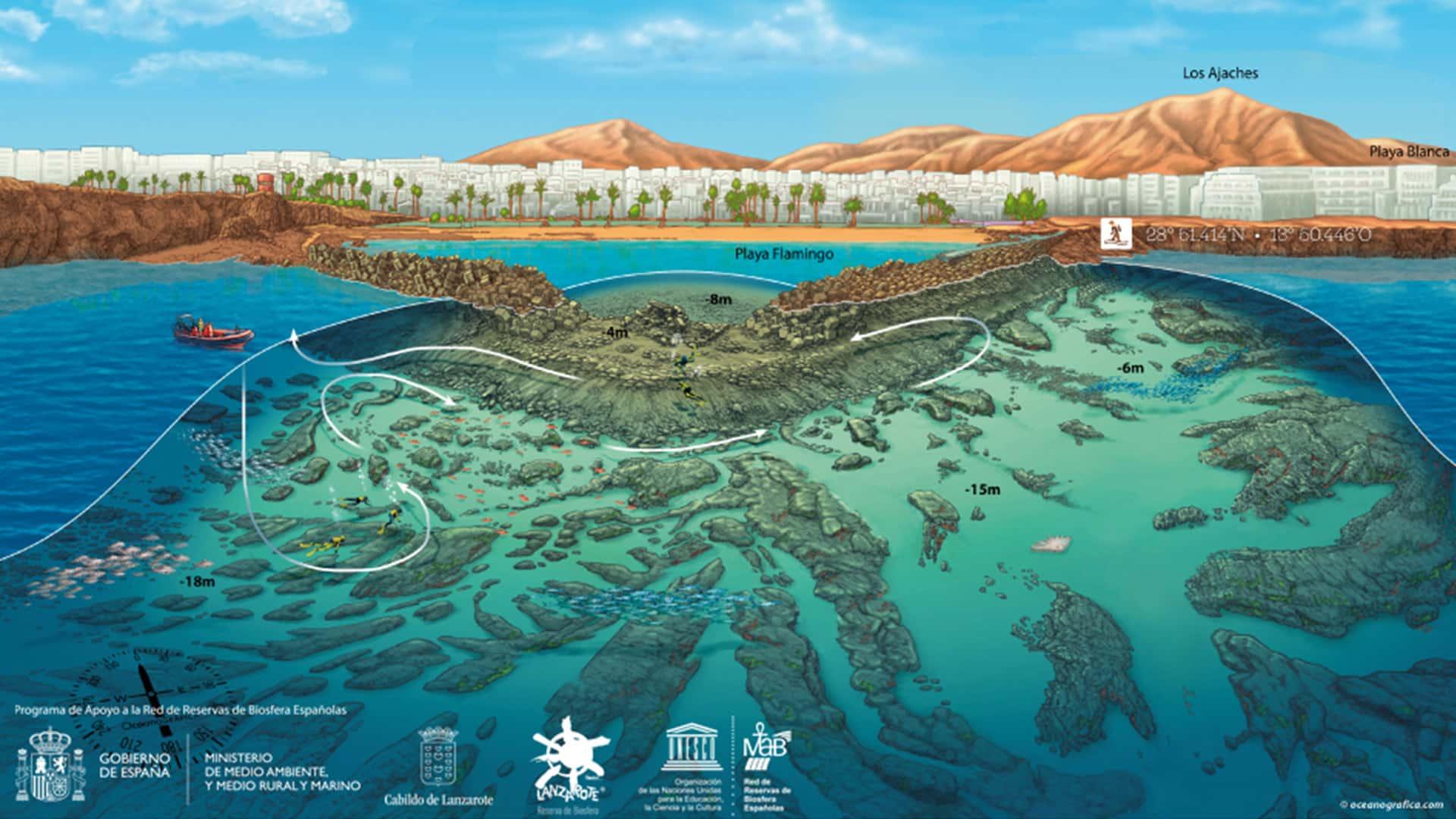 mojo dive ocean divers playa flamingo mapa lanzarote