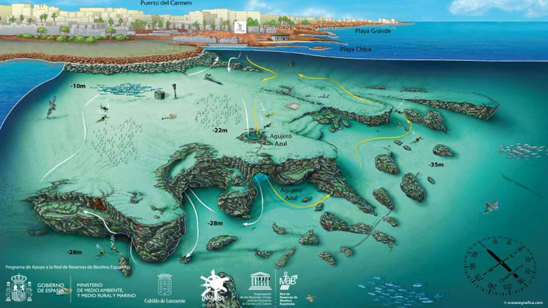 mojo dive ocean divers agujero azul dive centre lanzarote
