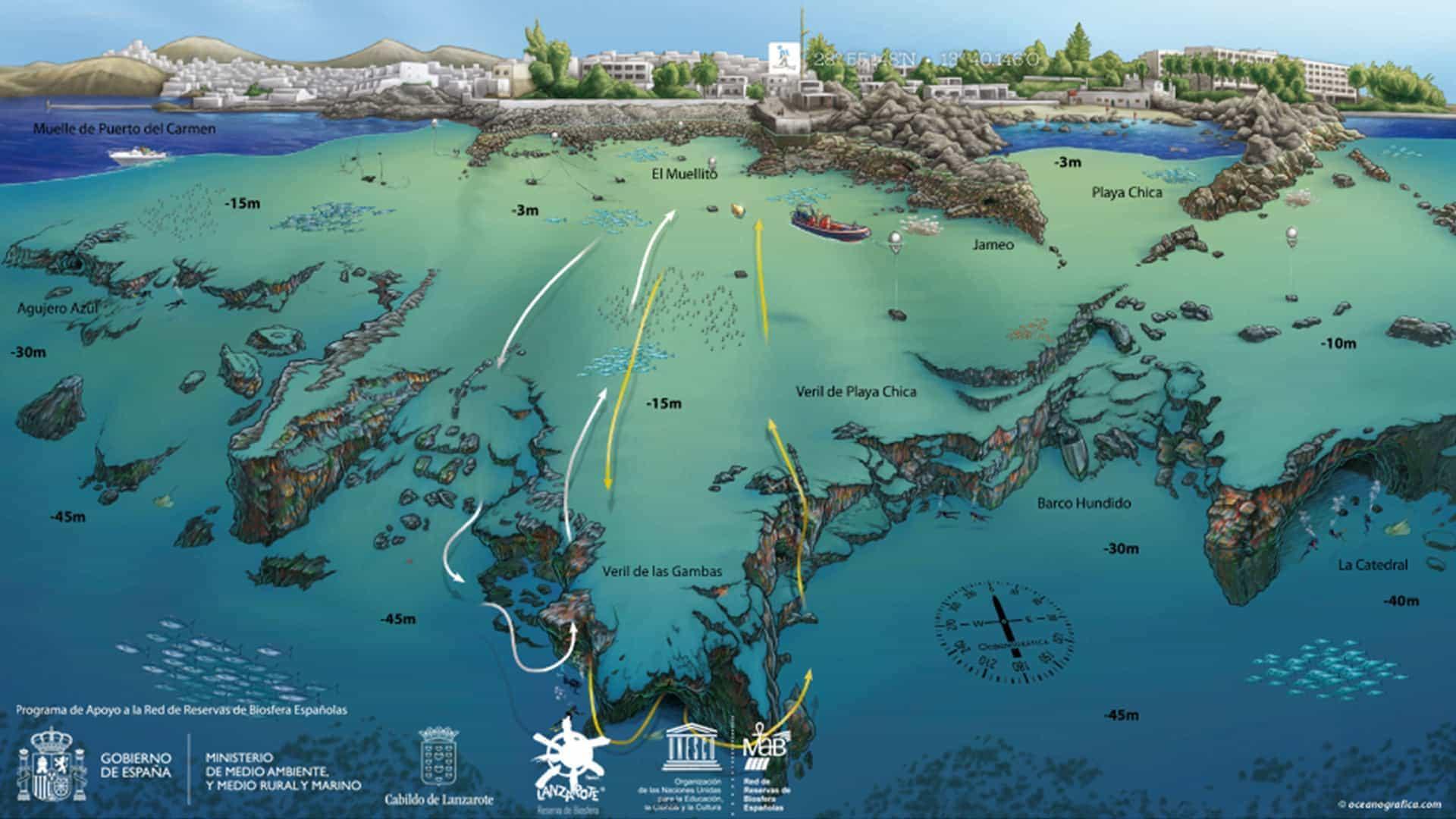 mojodive ocean divers mapa cueva de las gambas