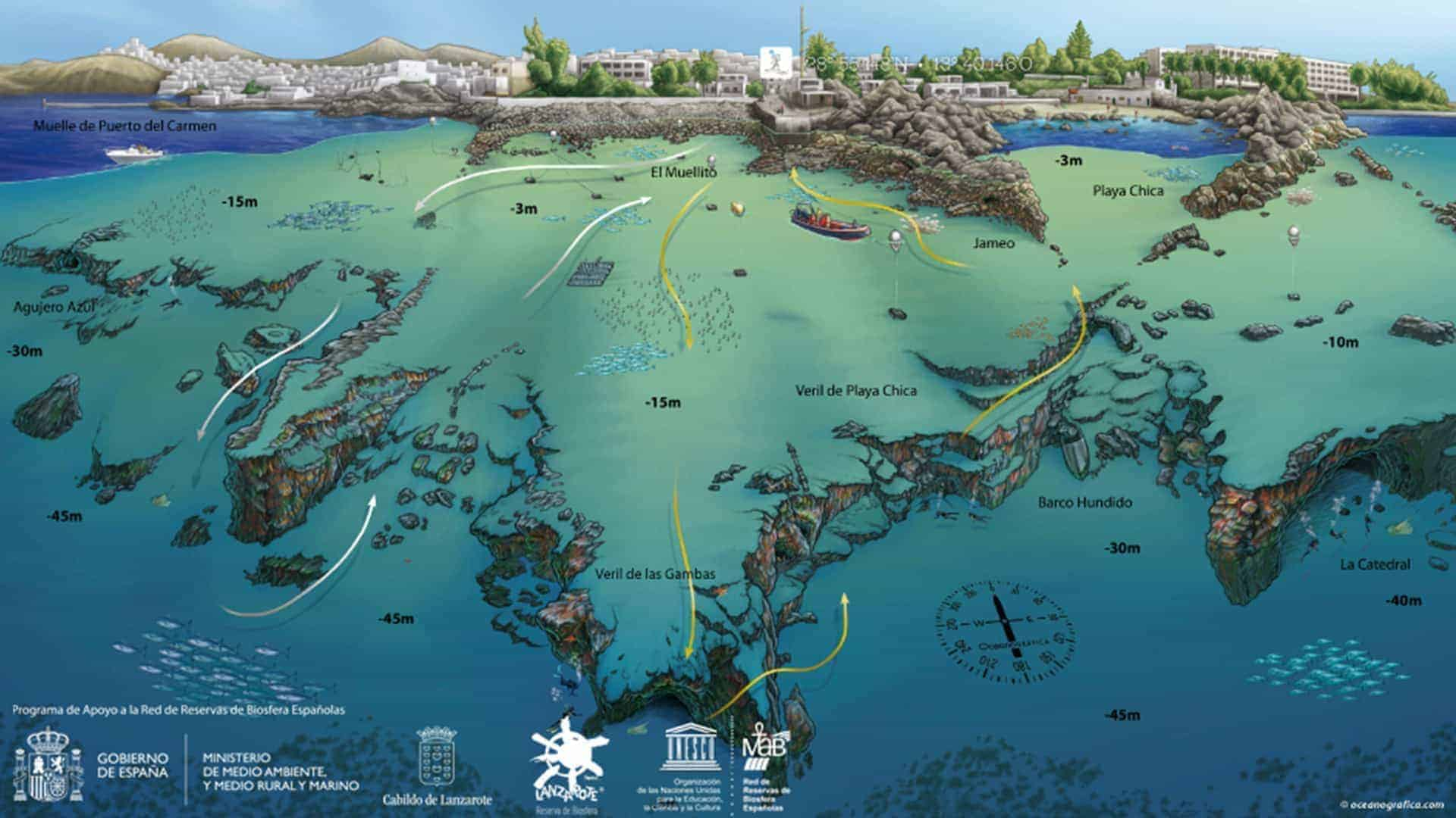 mapa mojodive ocean divers veril de playa chica