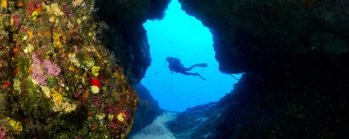 mojo-dive-lanzarote-ocean-divers-el-agujero-azul