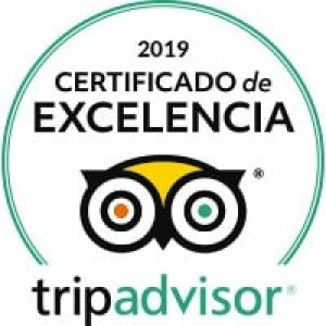 mojodive lanzarote ocean divers tripadvisor travelers choice sign 2019
